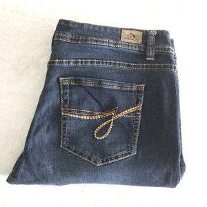 Jordache Dark Wash Skinny Jeans Size 10